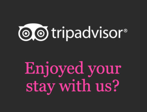 See the world's opinion of us on TripAdvisor
