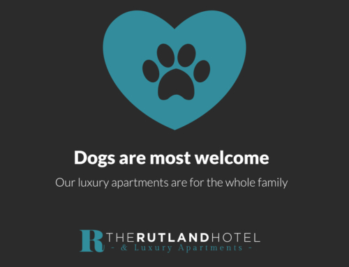 We are dog-friendly at The Rutland Hotel and just love it when we get fluffy little visitors!